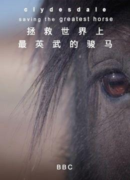 拯救世界上最英武的骏马