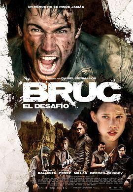 布鲁克2010
